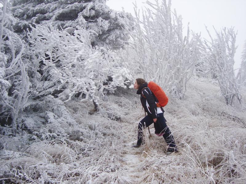 DSC01760 На пошуки зими!