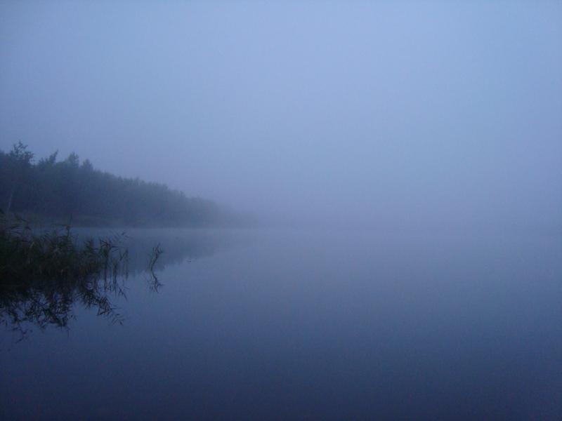 озеро в тумані