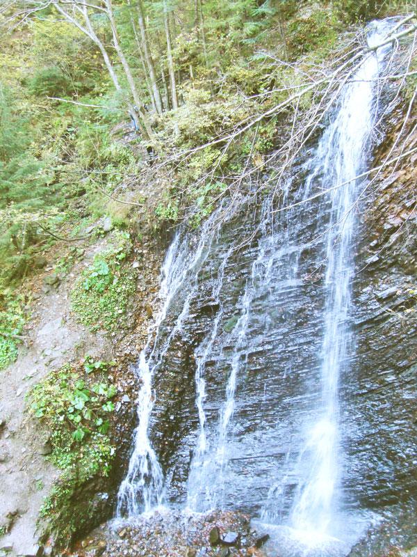 vodospad Guk Осінній Хомячок