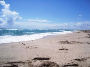 пляж на косі Бєляус